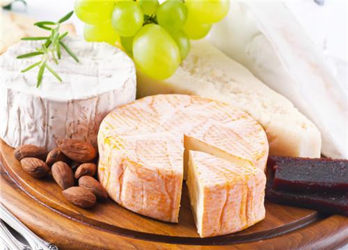 宋记乳酪加盟代理